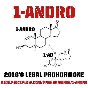 1-Andro / 1-Androsterone / 1-DHEA: Everything to Know