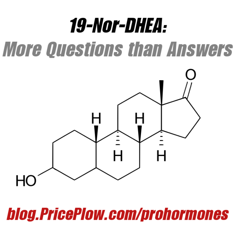 19-Nor-DHEA / 19 Nor Andro: More Questions than Answers