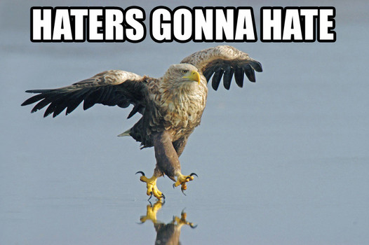 HATERS. GONNA. HATE.