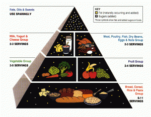 The Food Pyramid... Assassin of Millions of Americans