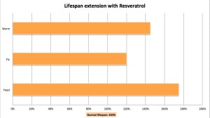 Resveratrol Lifespan