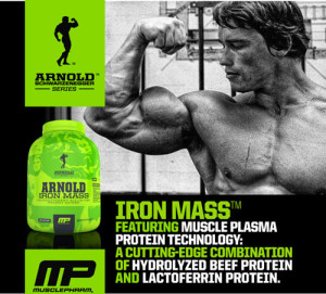 Arnold's Iron Mass - This is the one product in the Iron Series that we think has a hands-down winning formula