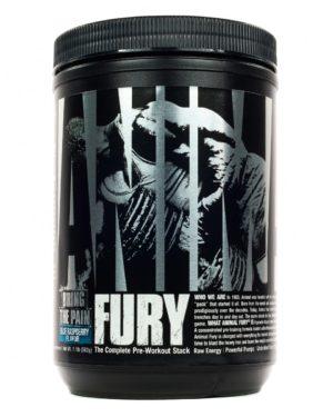 Animal Fury 2021