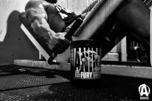 Animal Fury Leg Press