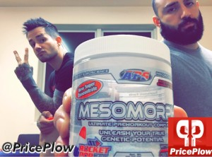 APS Mesomorph Review