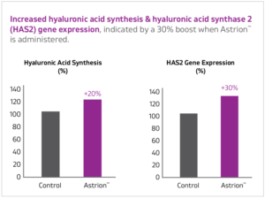 Astrion Hyaluronic Acid