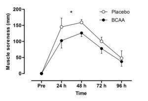 BCAA Muscle Soreness