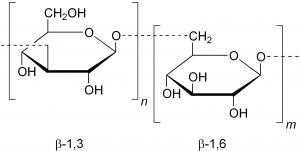 Beta-1,3/1,6-glucan