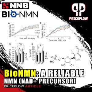 BioNMN