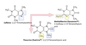 Caffeine Theacrine Dynamine