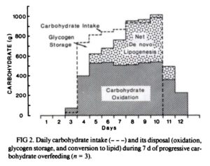 Carbohydrate Fat Gain