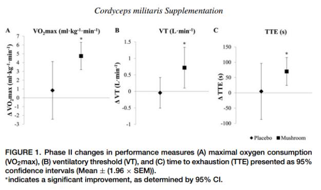 Cordyceps Militaris Benefits