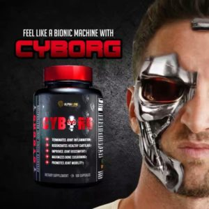 Cyborg Supplement