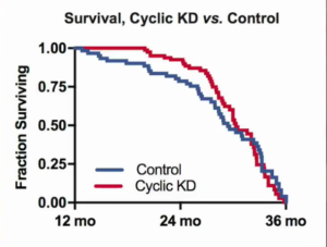 Cyclic Ketogenic Diet Survival Curve