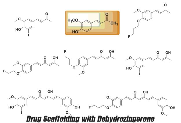 Dehydrozingerone Drug Scaffolding