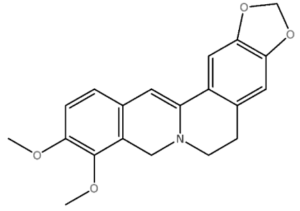Dihydroberberine Molecule