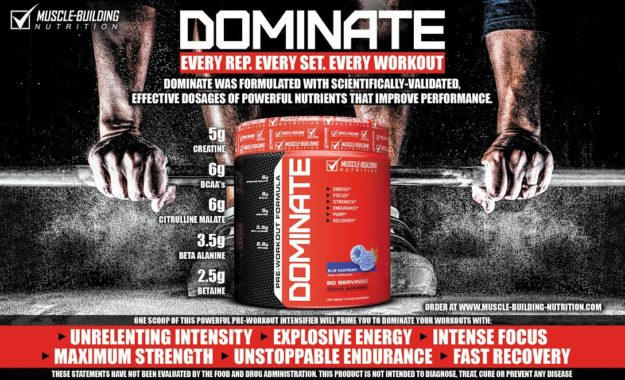 Muscle-Building Nutrition Dominate Banner