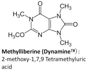 Dynamine Molecule