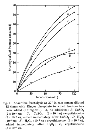Ergothioneine Fructolysis