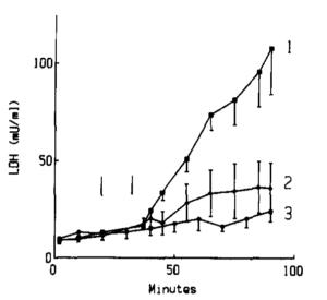 Ergothioneine Myogloblin