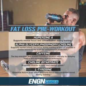 EVL ENGN Shred Pre Workout
