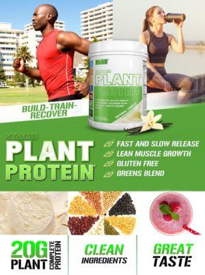 EVL Sports Plant Protein