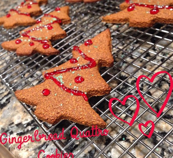 Gingerbread Protein Cookies