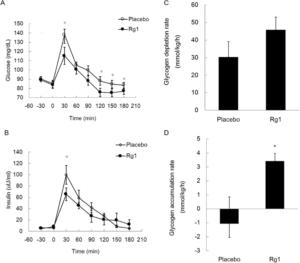 Ginseng Glycogen Depletion Accumulation