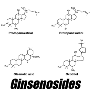 Ginsenosides