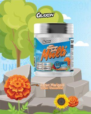Glaxon Multi