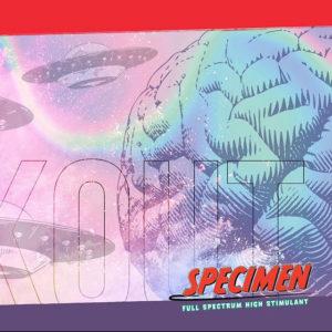 Glaxon Specimen Logo