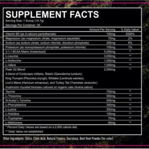Granite Supplements Adamantium Aminos Ingredients
