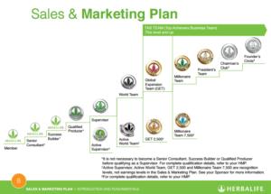 Herbalife Org Chart