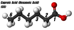 Hexanoic Acid