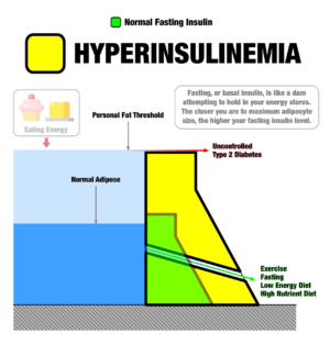 Hyperinsulinemia Personal Fat Threshold
