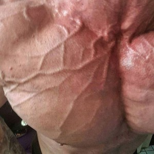 iForce Mike Dorn Veins