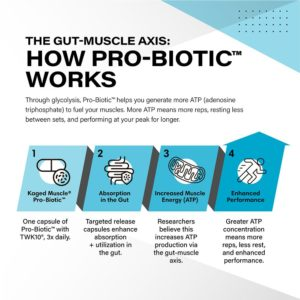 Kaged Muscle Pro-Biotic Gut Muscle Axis