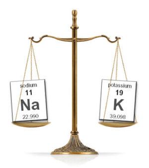 Keto Diet Sodium Potassium Balance