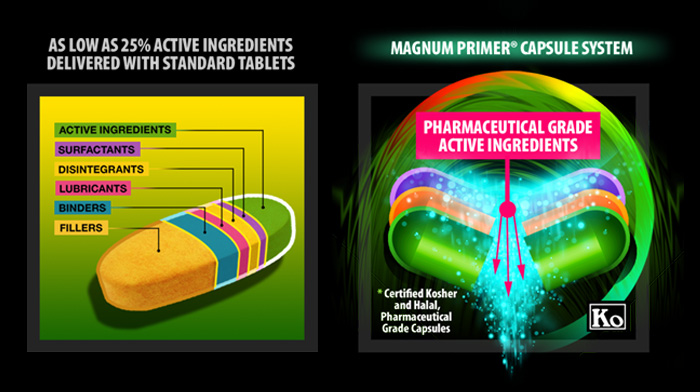 Znalezione obrazy dla zapytania magnum nutraceuticals primer performance packs
