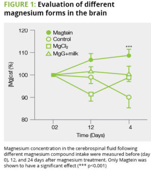 Magtein Benefits