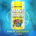 Mane Brain King
