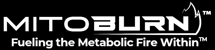 MitoBurn: β-Aminoisobutyric Acid (L-BAIBA) from NNB Nutrition