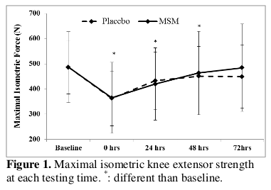 MSM Supplements: Joint Support for Athletes AND Aging!