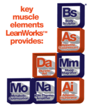 Muscle Elements LeanWorks Elements