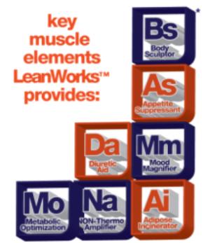 Muscle Elements LeanWorks Elements