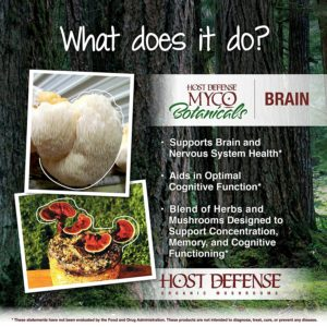 MycoBotanicals Brain Function
