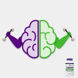 Natrol Cognium Brain Gains