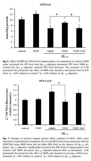 NMN Cognition ATP