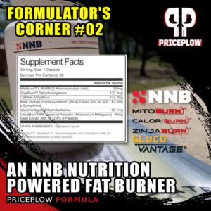 NNB Nutrition Fat Burner