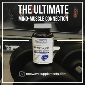 About to hit the gym? High Performer as helps improve the all too important Mind-Muscle Connection with workouts!
